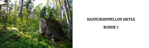 hannuksenpellon metsä - kohde 3