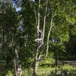 Suomenoja 2013 - © Tomi Järvinen